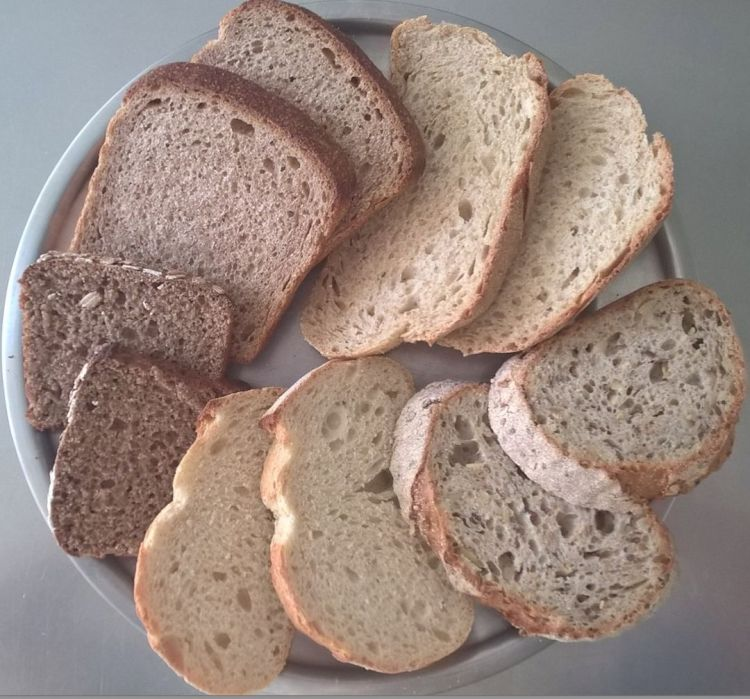 Slices from the various Companions Real Bread loaves arranged around a plate