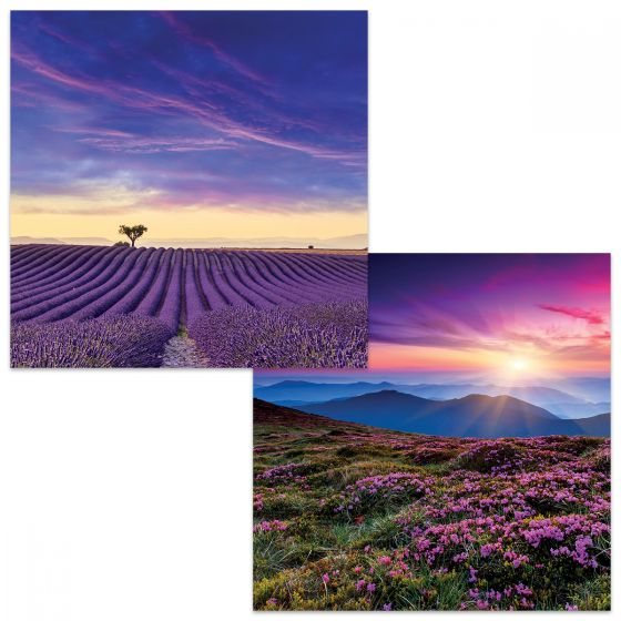 Large square cards. One depicts a cultivated field with rows of lavendar stretching to the horizon under a dramatic sky with pink streaked purple clouds. The other card shows lavendar growing on a hillside with a sunset over hills in the distance.