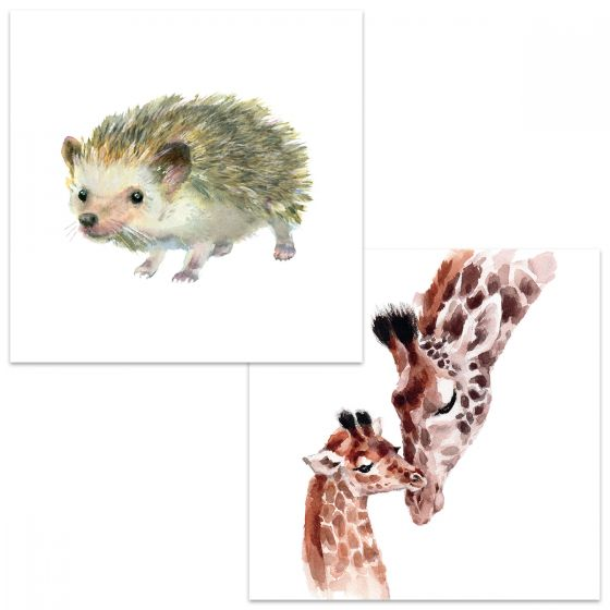 Large square cards. One card has a watercolour depiction of a hedgehog walking. The other card shows a giraffe nuzzling her youngster